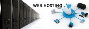 šta je webhosting